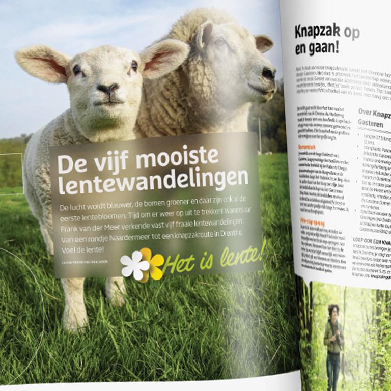 Mag_wandel